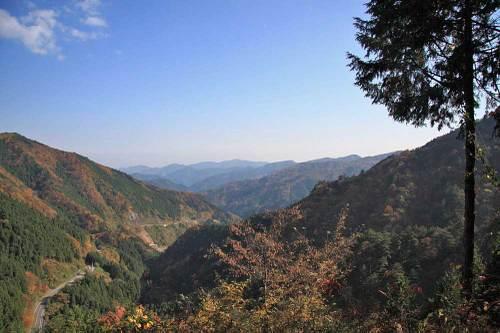 20101112_okutamako_w1000_2