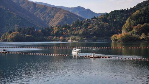20101112_okutamako_w1000_3