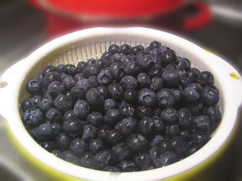 20110804_blueberry