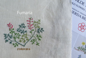 Img_1361fumaria600s