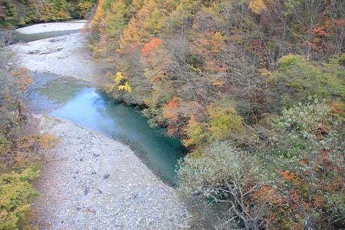 20101105_nishizawaw500s