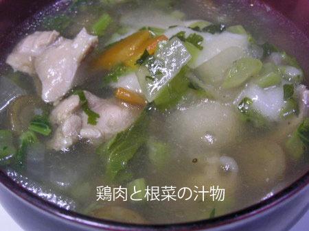 20110115shirumono