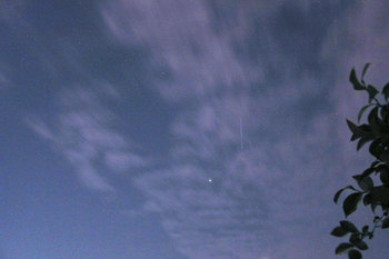 20081119iss2