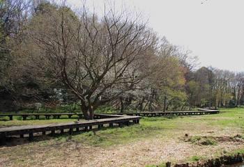 20090403_park