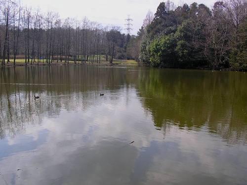 20100319_sayama_w750
