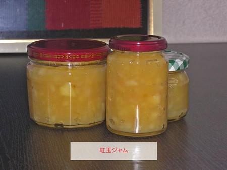 20121028kougyokutatin_4
