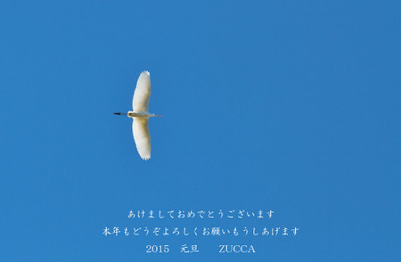 20150101_1000