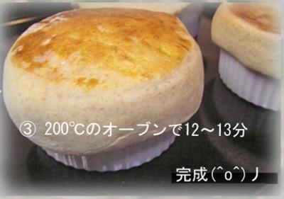 3_img_7952kinoko850s